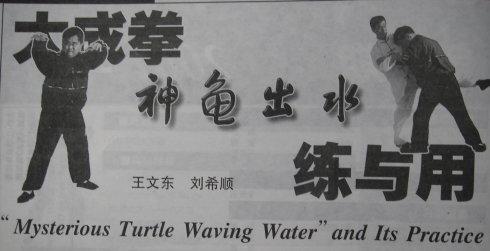 大成拳神龟出水练与用