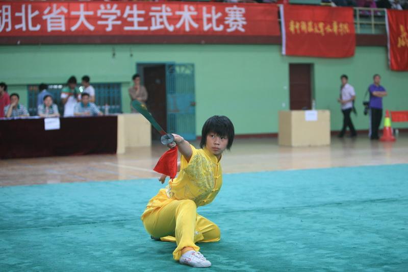 2009年湖北省大学生武术比赛掠影