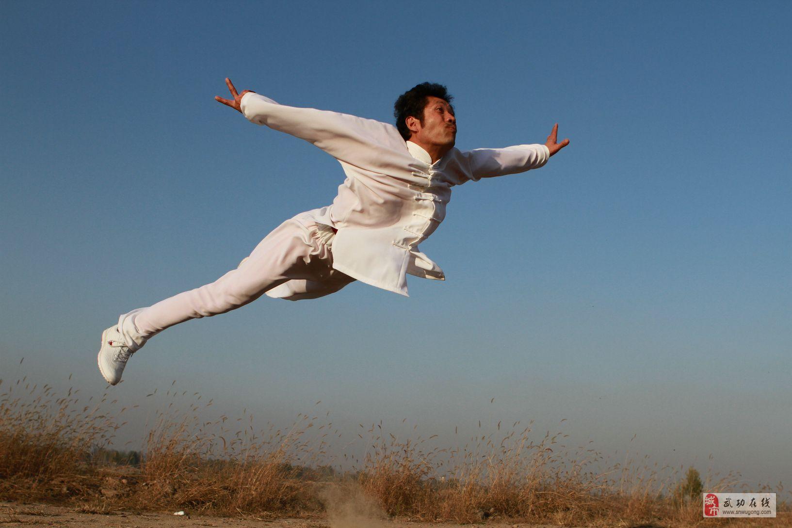 武功红拳——史智龙