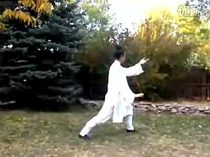 武当武术-太极二十八式