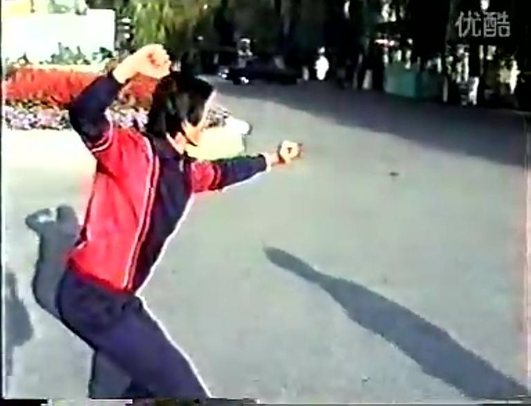 白猿通背拳-第一路-戴永禄演练