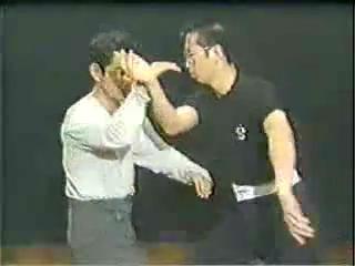 太极拳教学-第二集-日本拍摄-王树