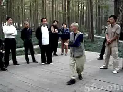 八卦掌-王琪演练