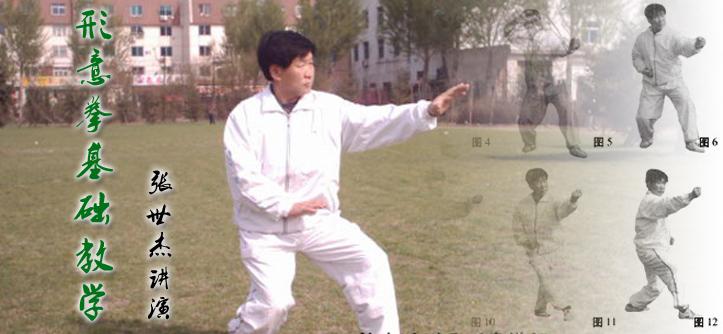 形意拳基础教学-技击方法-张世杰演练
