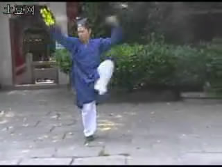 武当密拳 云水潺 宋学玉演练