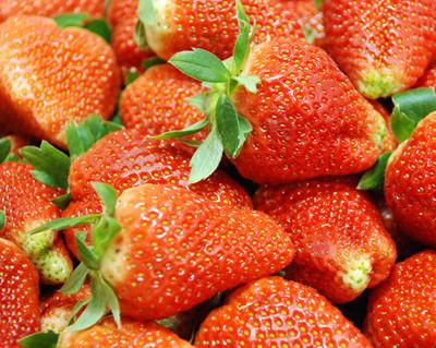 体质搭配水果的10大养生技巧
